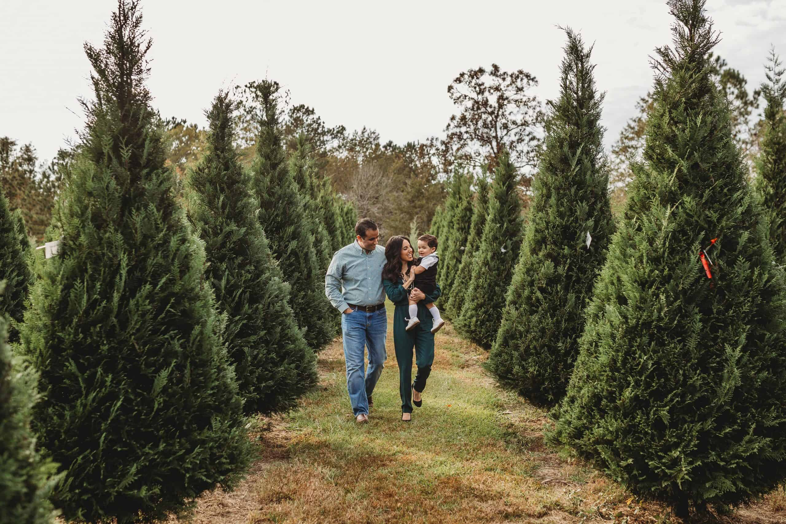 Christmas tree Farm family pictures