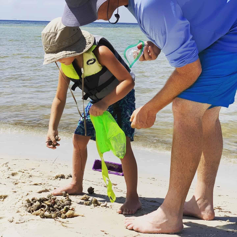 Boy picking up shells from beach
